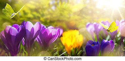 美しい, バックグラウンド。, 花, 春, 公園, 日光, 朝, 4 月, 花