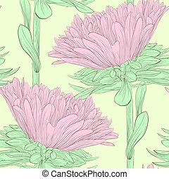 美しい, ピンクの花, aster.