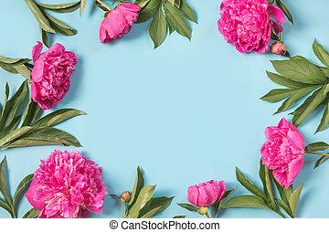 美しい, ピンク, シャクヤク, 花, ∥ように∥, フレーム, 上に, punchy, パステル, blue., コピースペース, そして, 終わり, 。, 上, ビュー。, 平ら, lay.