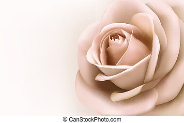 美しい, ピンク, ベクトル, rose., 背景