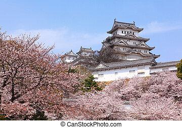 美しい, ピンク, 打撃, 花, さくらんぼ, 日本語, 日本, 城