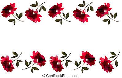 美しい, ベクトル, roses., 背景, 休日, 赤