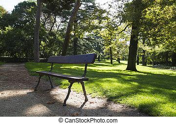 美しい, ベンチ, 葉が多い, 公園, 木