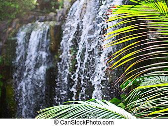 美しい, 光景, の, 滝, 中に, jungle.