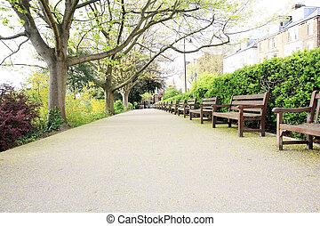 美しい, 公園のベンチ, 木