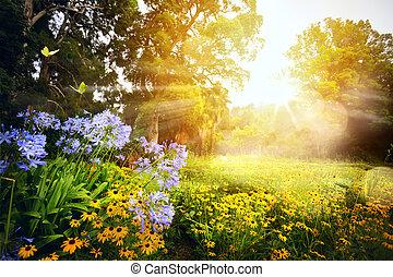 美しい, 公園, 芸術, 日没, landscape;