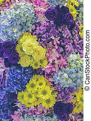 美しい, 別, 庭, カラフルである, effect., wall., 新たに, フィルターされた, 飾られる, 花, 柔らかい, タイプ