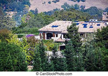 美しい, 区域, francisco, 丘, 囲まれた, 木, 湾, 包囲, カリフォルニア, 大邸宅, san