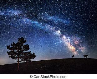 美しい, 夏, 夜空, way., 星, 乳白色, crimea