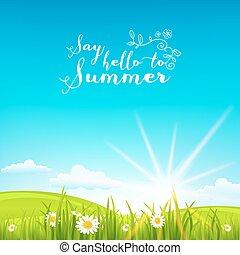 美しい, 夏, 背景