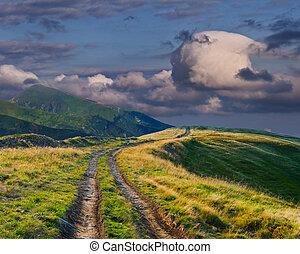 美しい, 夏, 道, 風景, 山