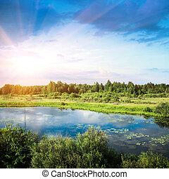 美しい, 夏, 風景