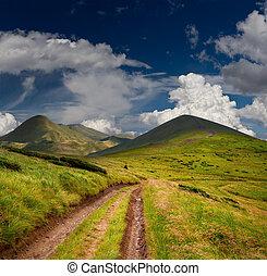 美しい, 夏, carpathian, ウクライナ, 道, 山。, 風景