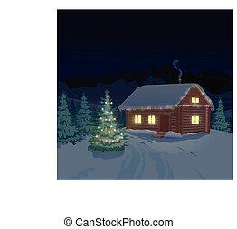 美しい, 家, 冬の景色