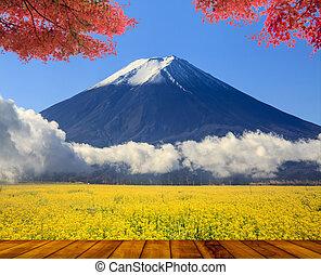 美しい, 山, かえで, すてきである
