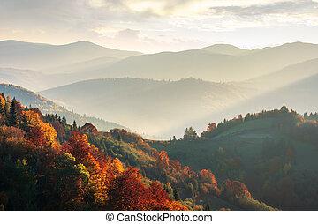 美しい, 山, 秋, 日没, 風景