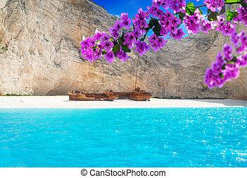 美しい, 島, lanscape, zakinthos