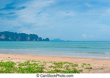 美しい, 州, krabi, タイ, 花, 浜, 山, 光景