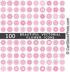 美しい, 抽象的, 花, icons., ベクトル, イラスト