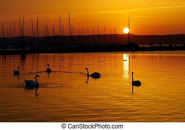 美しい, 日の入海