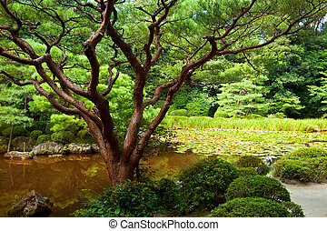 美しい, 日本の庭