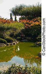 美しい, 日本の庭, デュッセルドルフ