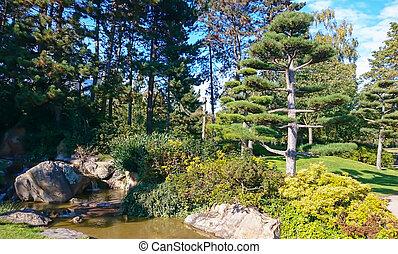 美しい, 日本の庭, d?sseldorf
