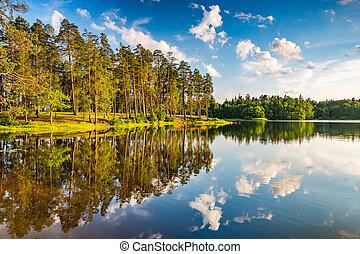 美しい, 日没, 森林, 湖