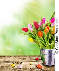 美しい, 春, チューリップ