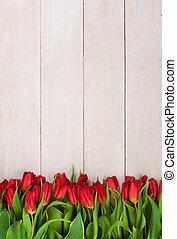 美しい, 木製である, チューリップ, 背景, 白い花, 赤