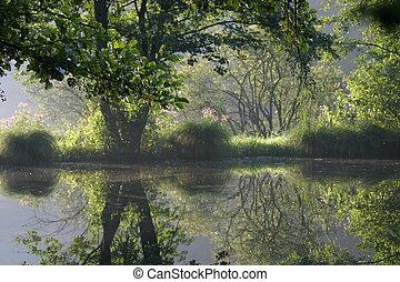 美しい, 池