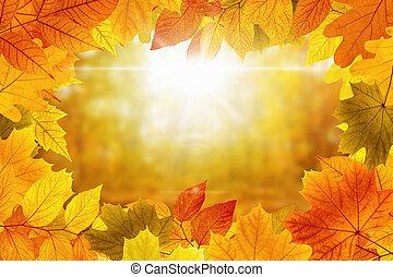 美しい, 活気に満ちた, 背景, 秋