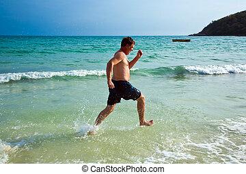 美しい, 浜, 水, 立ち去る, 楽しむ, 人