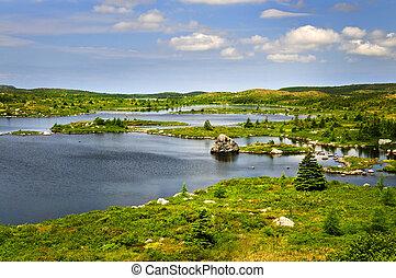 美しい, 海岸, ニューファンドランド, 湖