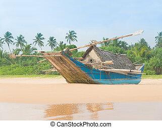 美しい, 海洋, やし, 釣り, 浜, ボート