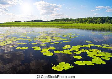 美しい, 湖