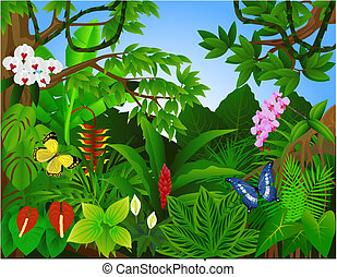 美しい, 熱帯 森林