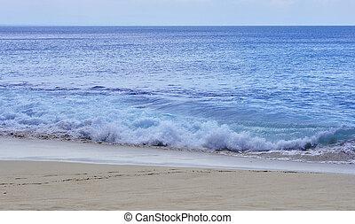 美しい, 熱帯 浜, 光景