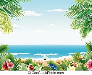 美しい, 熱帯 浜