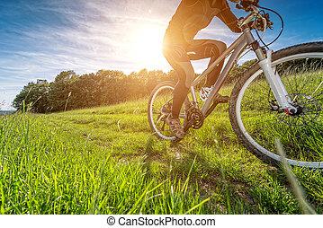 美しい, 牧草地, サイクリング, 自転車, 細部, 写真, スポーツ