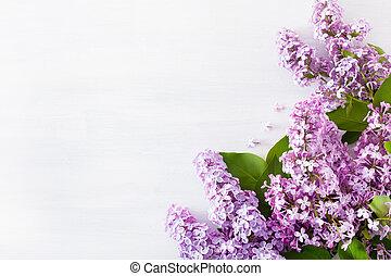 美しい, 白い花, 背景, ライラック