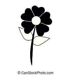 美しい, 白い花, 黒, 漫画