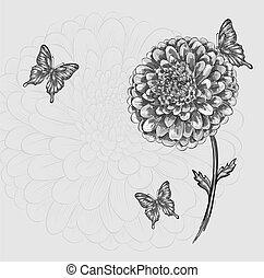 美しい, 白黒, 花, 蝶