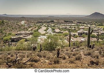 美しい, 砂漠, 共同体