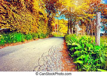 美しい, 秋風景, ∥で∥, 田舎の道路