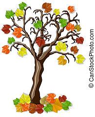 美しい, 秋, 木