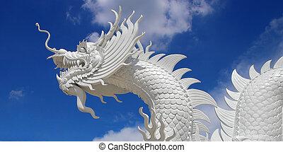 美しい, 空, 白い背景, ドラゴン