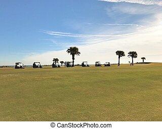 美しい, 緑, ゴルフコース, ∥で∥, a, 青い空, 背景