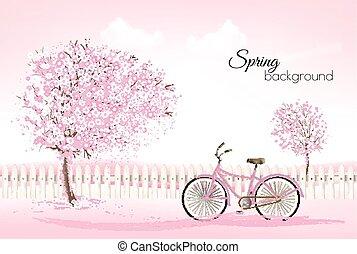 美しい, 背景, 自然, 春, 開くこと, 木, bike., vector.