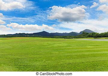 美しい, 芝生, 緑, 庭, 風景